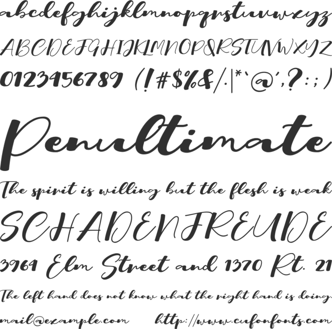 Rich Font : Download Free for Desktop & Webfont