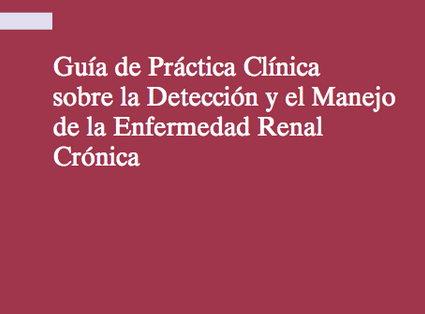 Guía de Práctica Clínica sobre la Detección y el Manejo de la Enfermedad Renal Crónica (ERC)