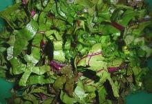 Ensalada hojas de remolacha