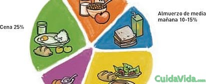cantidad-comida-optima-dia