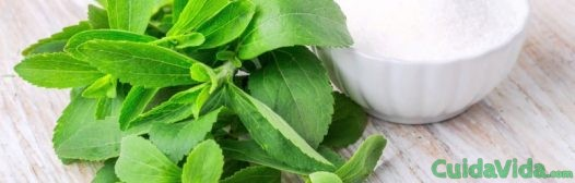 stevia estevia sustituto de azúcar