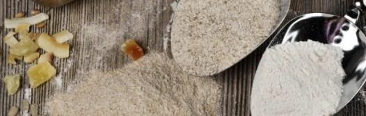 harina refinada vs harina integral