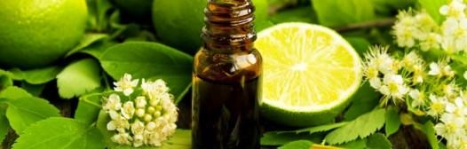 aromaterapia aceites citricos