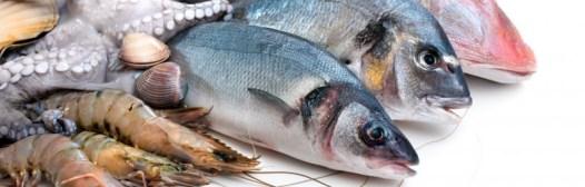 pescado marisco