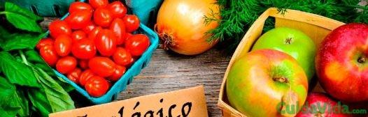 Qué son los alimentos ecológicos