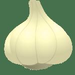 ail - Dossier : Fruits et légumes de saison au mois d'août