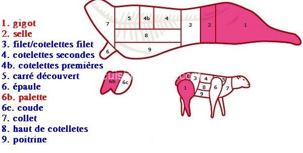 Les différents parties du mouton à rôtir