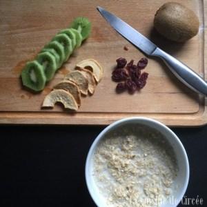 porridge_pomme_kiwi_cranberries_01