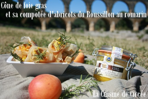 cone_foie_gras_abricot_01