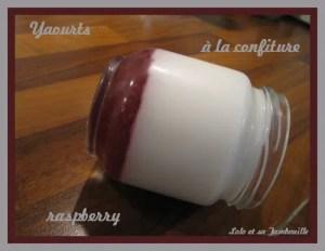 Yaourts à la confiture raspberry