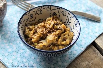 Curry de lentilles corail (10)