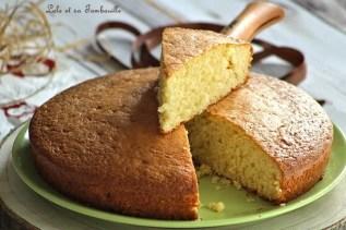 Gâteau au yaourt (6)