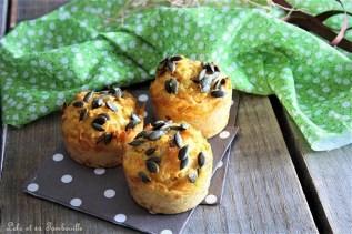 Muffins aux caottes, épices & sonss (2)
