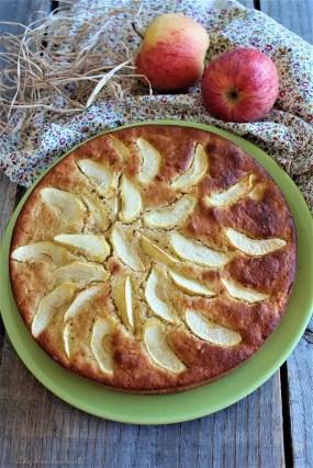 Moelleux aux pommes & cannelle (3)