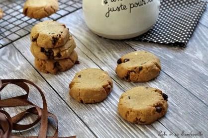 Cookies pâte de spéculoos & pépites de chocolat (5)
