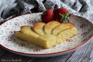Gâteau Maury (4)