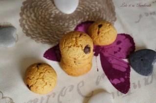 Biscuits vanillés & pépites de chocolat {avec jaunes d'oeufs} (4)