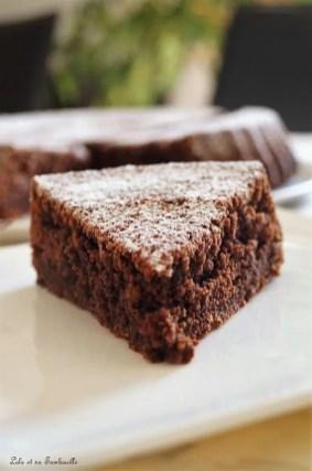 Caprese al cioccolato (7)