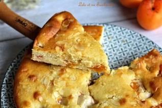 Gâteau amandine aux abricots (6)