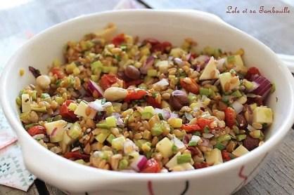 Salade de petit épeautre (1)