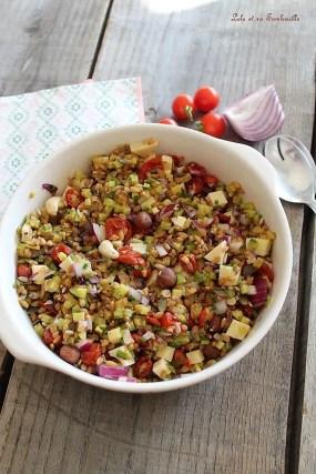 Salade de petit épeautre (4)
