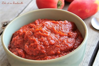 Sauce tomate maison (4)