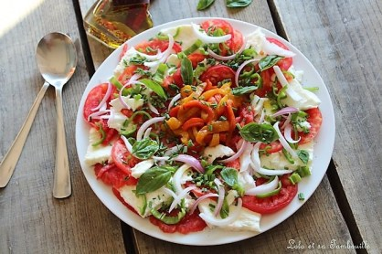 Tomates à la mozzarella Treccia (3)