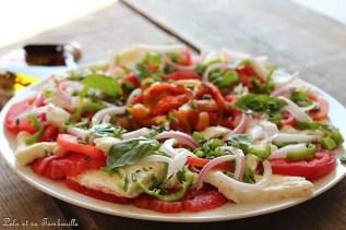 Tomates à la mozzarella Treccia (5)