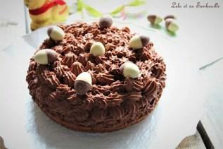 Gâteau mousse au chocolat (2)