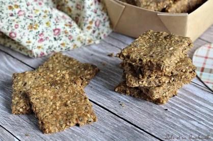 Crackers aux graines (1)