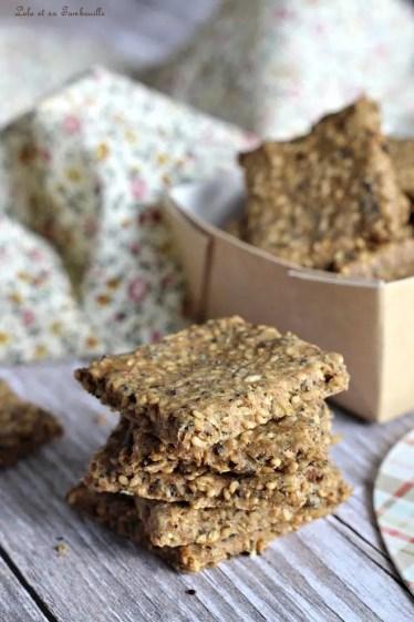 Crackers aux graines (4)