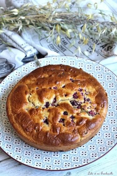 Gâteau au lait de coco & framboises (2)