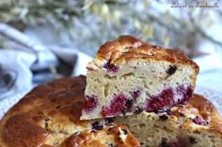 Gâteau au lait de coco & framboises (5)