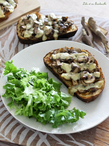 Bruxchettas aux champignons (8)