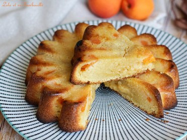 Gâteau aux abricots (6)