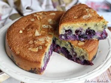 Gâteau aux myrtilles (4)