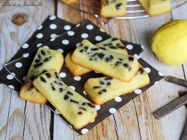 Moelleux citron & chocolat (2)