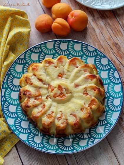 Flan au yaourt & abricots (3)