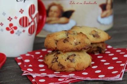 Biscuits tendres au chocolat {Martha Stewart} (6)