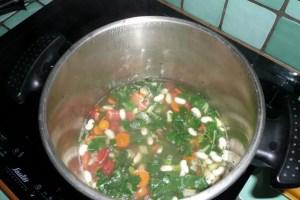 Soupe de petit épeautre au vert de blette 3