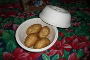 Saucisson à cuire et pommes de terre (2)