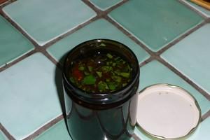 Sauce pimentée au gingembre (6)