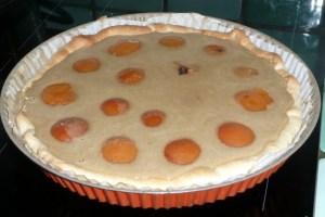 Tarte aux abricots noisette amande (3)