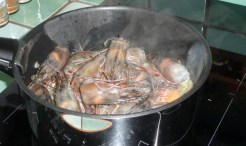 Fumet de crevettes (5)