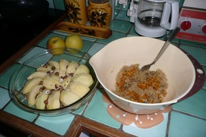 Crumble aux pommes (1)
