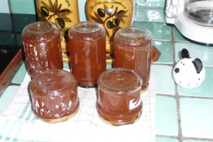 Confiture d'oranges amères au sucre de canne blond (4)