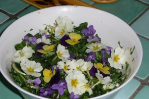 Salade sauvage détox (8)