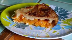 Gratin aux abricots et au romarin (5)
