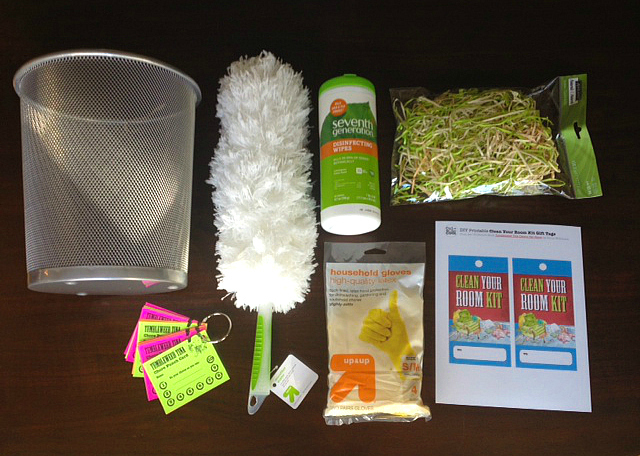 Tumbleweed Tina Clean Your Room Kit 1