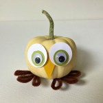 DIY Owl Pumpkin Thanksgiving Craft — Owldorable!!